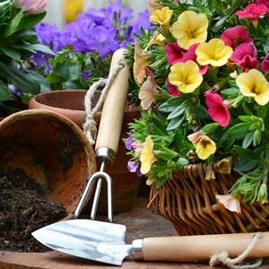 Gardening Donation