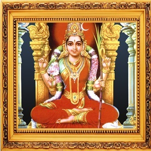 Devi Navaratri MAIN DURGA DEVI ABHISHEKA